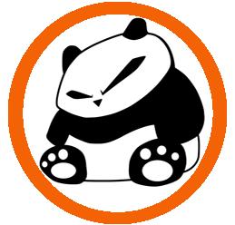 Team – Intervista ai Panda Rei